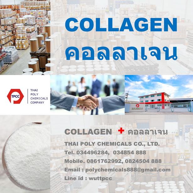 คอลลาเจน, คอลลาเจนเปปไทด์, ไฮโดรไลซ์คอลลาเจน, คอลลาเจนผง, Collagen, Collagen Powder