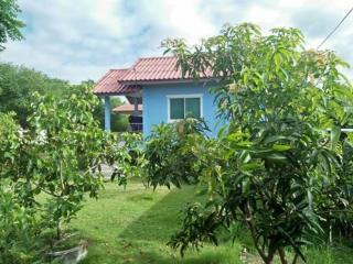 ขายบ้าน 2 หลัง จังหวัดอยุธยา บนที่ดินขนาด 200 ตรว. บ้านร่มรื่นมาก ต้นไม้เยอะ