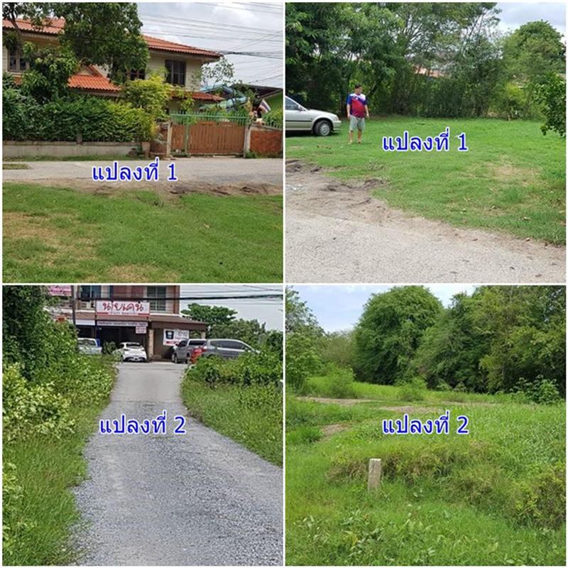 ขายที่ดินสวย 100 ตรว. ใกล้สำนักงานอำเภอเมืองลพบุรี 2 แปลง โทร 0868489899
