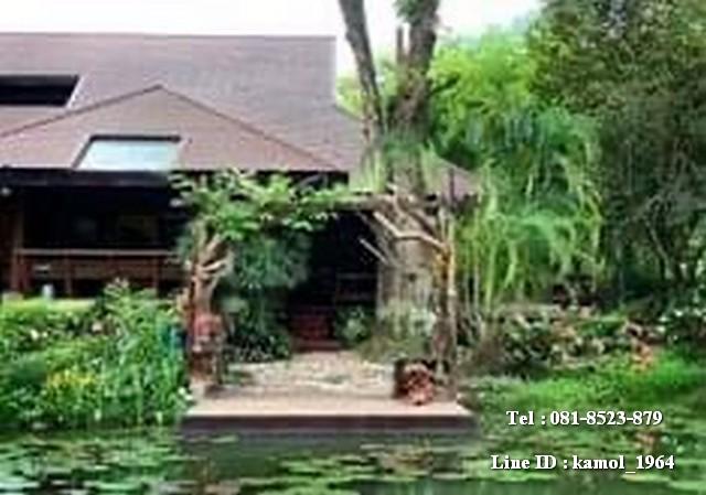 ขายบ้านไม้สักทองทรงไทยสุดหรูตกแต่งพร้อมอยู่ ติดลำธาร วิวภูเขา